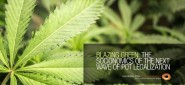 Blazing Green: The Socionomics of the Next Wave of Pot Legalization